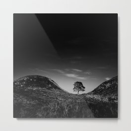 Seeking Solace Metal Print