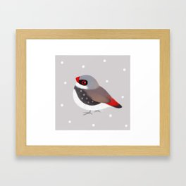Diamond Firetail Framed Art Print