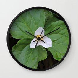 Trillium 2 Wall Clock