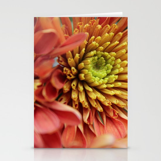 Blooming Stationery Cards