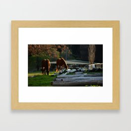 Golden Brushed Horses Framed Art Print