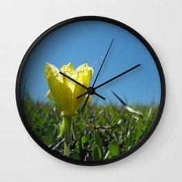 Glimpse Wall Clock