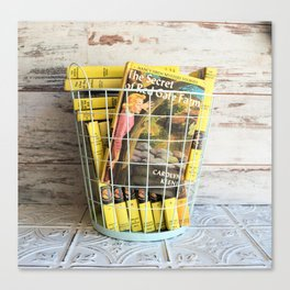 Nancy Drew in a Basket Canvas Print