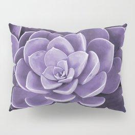 succulent Blossom violet color Pillow Sham