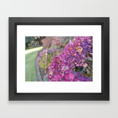 Autumn Flowers Framed Art Print