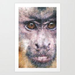 Chino the Cheeky Capuchin Art Print