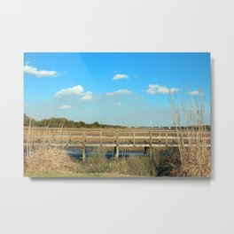 Salt Marsh View Metal Print