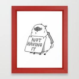 Not Having It - Angry Pug Framed Art Print