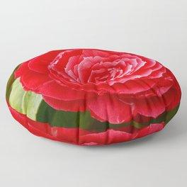 Camellia japonica Floor Pillow