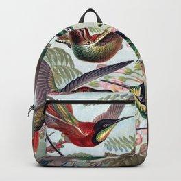 Hummingbirds Backpack