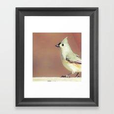 Little Bird 02 Framed Art Print