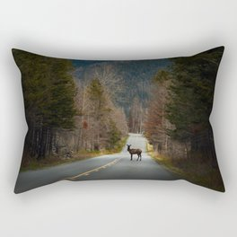 Crossing Paths Rectangular Pillow