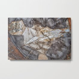 Petrified wood 3266 Metal Print