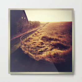Golden grasses in the Cotwolds Metal Print