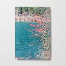 Forest Lake Colorful Scenery Metal Print