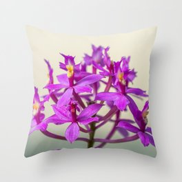Epi Pretty Lady Misumi Orchid Flowers Throw Pillow