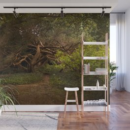 Into the Woods Wall Mural