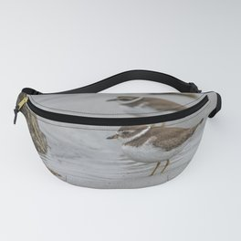Pair of Plovers on the beach Fanny Pack