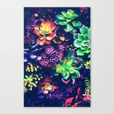 Colorful Plants  Canvas Print