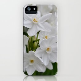 White Flowers at Longwood iPhone Case