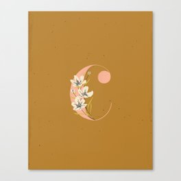 C for Cosmos Canvas Print