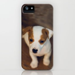 Little puppy dog iPhone Case