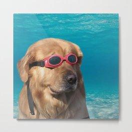 Swimmer Dog Metal Print