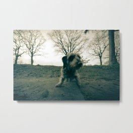 DACKEL DOG #38 Metal Print