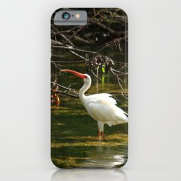 Ibis Dating Place iPhone Case