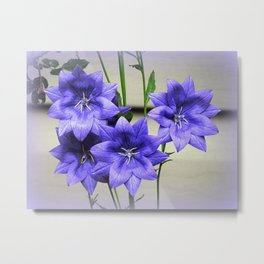 Star Beauty in Blue Metal Print