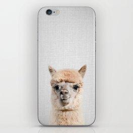 Alpaca - Colorful iPhone Skin