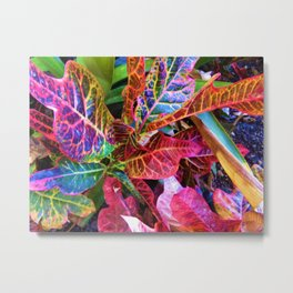 Colorful Leaves 2 Metal Print