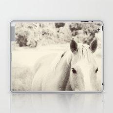 Black and White Palomino Laptop & iPad Skin