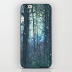 The Woods In Winter iPhone & iPod Skin