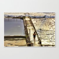 Time for a swim  Canvas Print