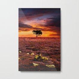 Egton Moor Sunset Metal Print