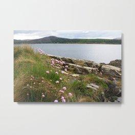 Dingle Peninsula, Ireland  Metal Print