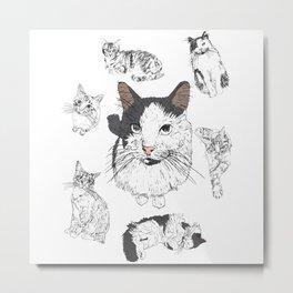 Cat A Mania Metal Print