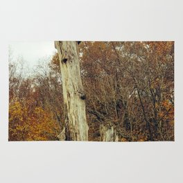 Old dead tree on an autumn day   Photography Rug