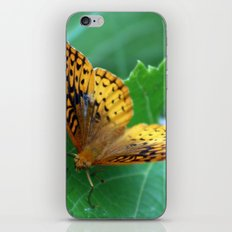 Great Spangled Fritillary Butterfly iPhone & iPod Skin