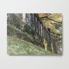 Moss Fence (Nikko, Japan) Metal Print