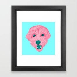 havanese - aqua Framed Art Print