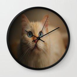 Giuseppe the Cat Wall Clock
