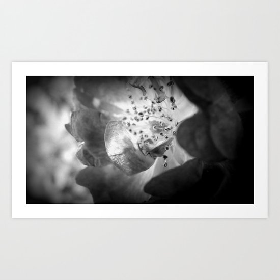 Light Comes From Within Art Print