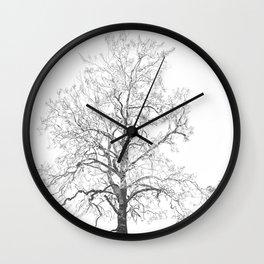 Sycamore Tree Wall Clock