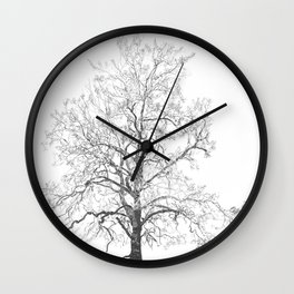 Sycamore Tree Wall Clock