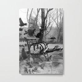 Central Park B/W Metal Print