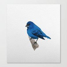 Messenger 004 Canvas Print