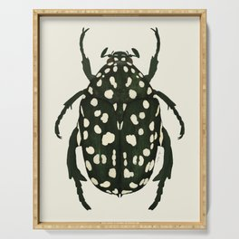 green beetle insect Serving Tray