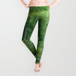 Mystery of the Forest Leggings